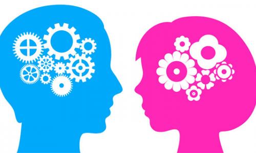 Het verschil tussen man en vrouw
